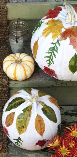 Autumn Decoupage Gourds Picture