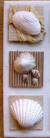 Seashell Summer Crafts Picture